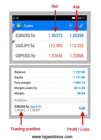 Forex market terms